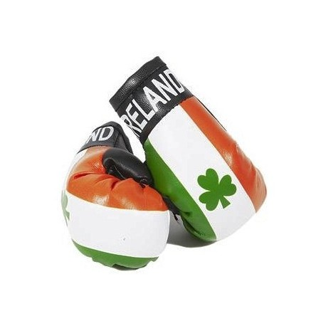 Ireland Boxing Gloves Dangle