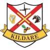 Ireland County Crest Sticker