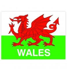 Wales Flag Rectangular Sticker