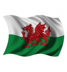 Wales Flag - 36x60